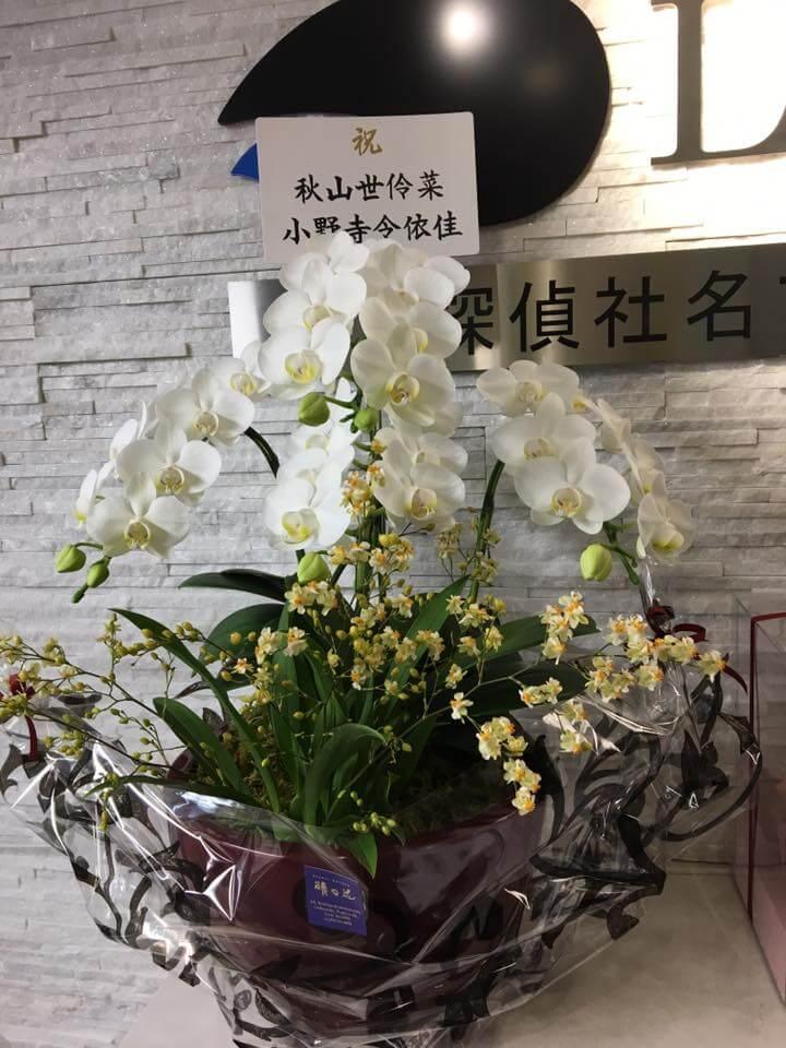 名古屋の高田探偵に名古屋駅移転祝いのお花